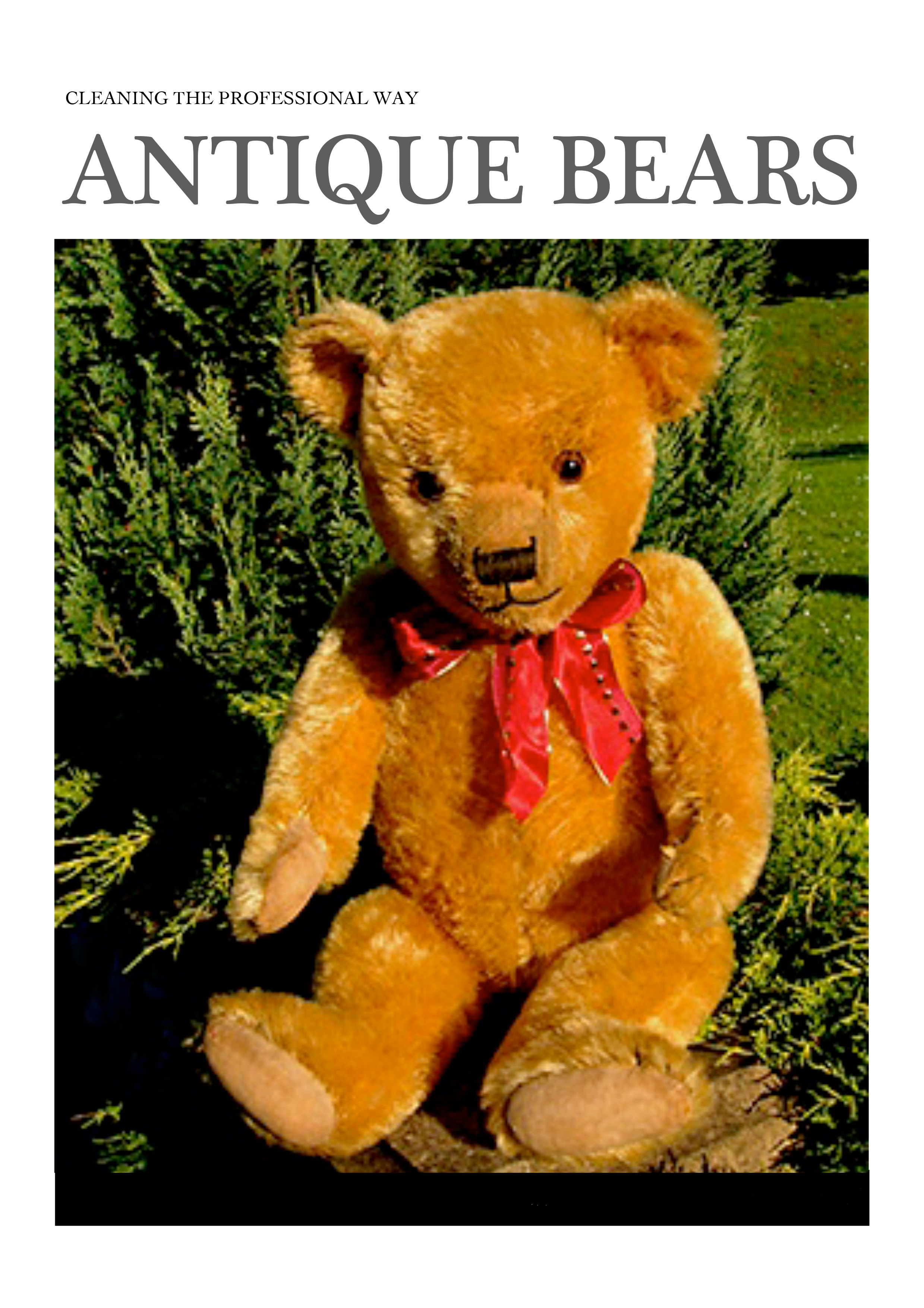 Final Professional Teddy Bear Cleaning ebook